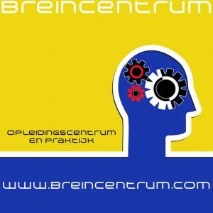 psychomotorische remedial teaching